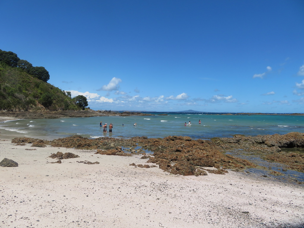 Beach with Swimmers Beach with Swimmers Tiritiri Matangi Island  2/22/20