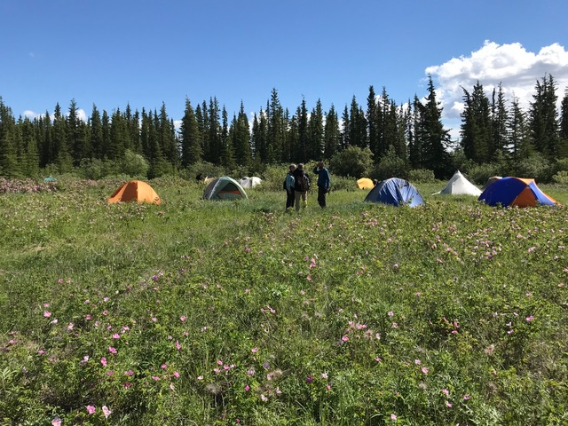 Photo by Julianne Warren, Gwichyaa Zhee Fort Yukon, Alaska, June 2019